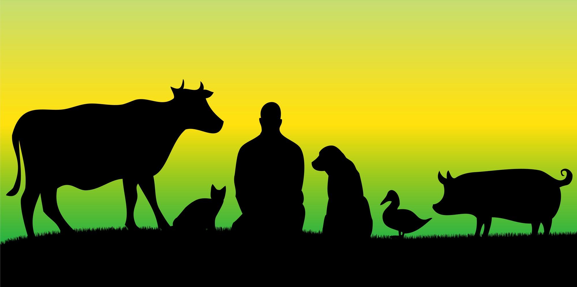 כך נועדנו להיות, חברים של אותם יצורים נפלאים שחולקים איתנו את הפלנטה.