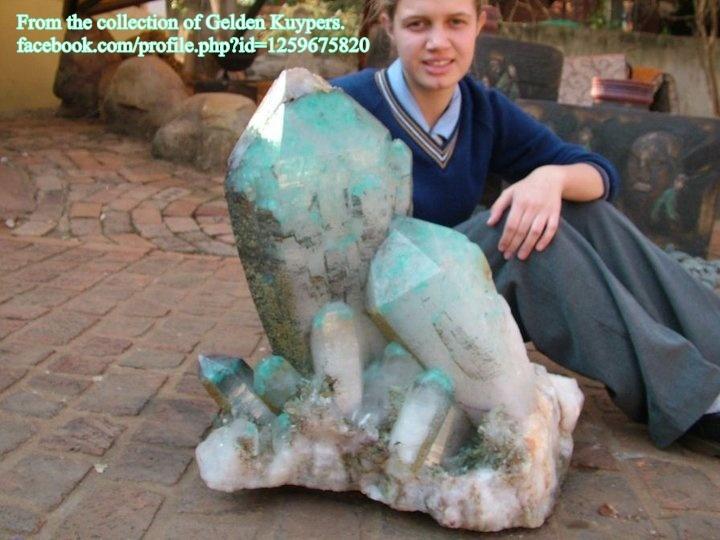 מושבה ענקית של אג'ויט על קוורץ. מהאוסף של בית המסחר גלדן קויפר בדרום-אפריקה. From the collection of Gelden Kuypers from S.Africa