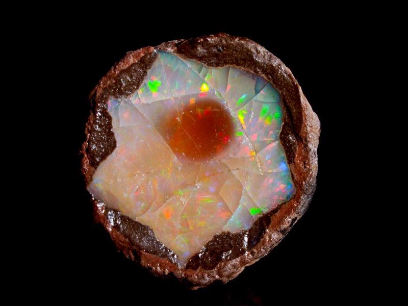 אופאל אש שהתגבשה בתוך כדור סלע. צילום: מקס קובלסקי Photo by Max Kovalski www.maxkov.com