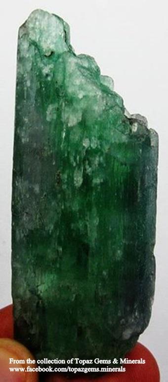 הידנייט ירוקה בגוון כהה יחסית, נדיר למדי. מהאוסף של בית המסחר טופז-ג'מס בתאילנד. From the collection of Topaz Gems & Minerals