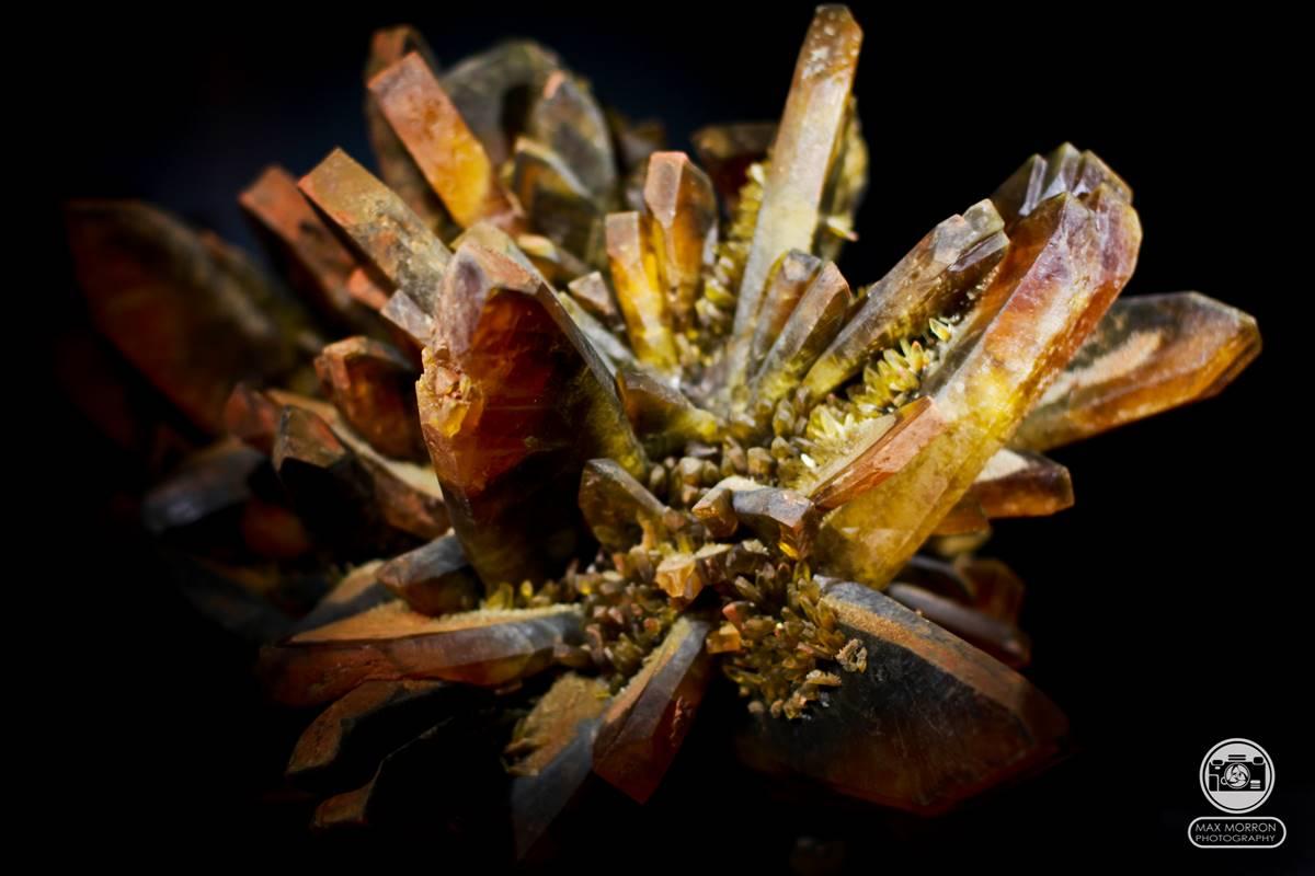 מושבה מרהיבה של טיטניום קוורץ עם נגיעות של ברזל שמעניק את הצבע הצהבהב. מתערוכה במוזיאון בפירנצה. צילום: מקס קובלסקי Photo by Max Kovalski www.maxkov.com.