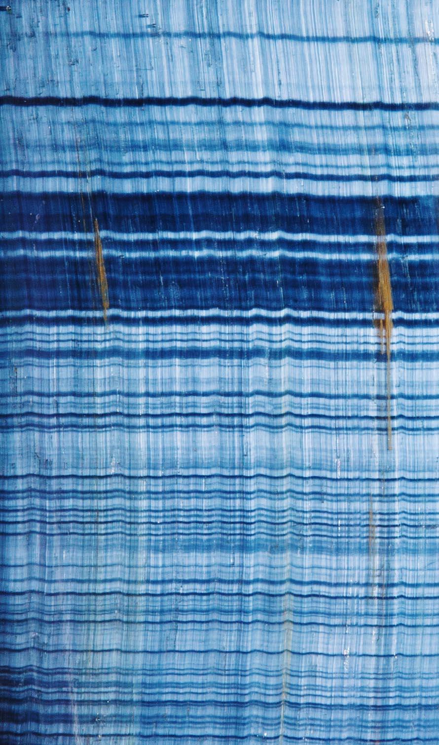 """עין הנץ, תמונת תקריב, אחד הטסטים שצולם לצורך יצירת """"קלפי הנתיבים"""". צילום: מקס קובלסקי Photo by Max Kovalski www.maxkov.com"""