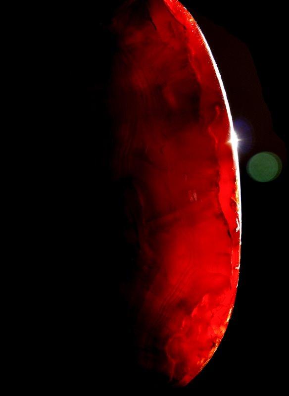 קרנליאן  בגוון אדום. צילום: מקס קובלסקי Photo by Max Kovalski www.maxkov.com
