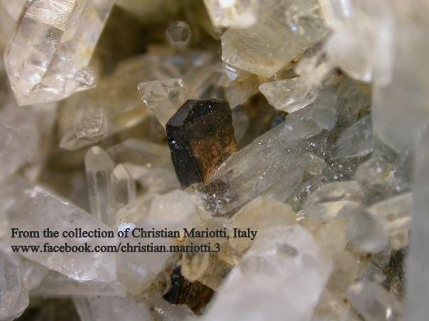 קאלקו-פיריט בהתגבשות משותפת עם קריסטל-קוורץ מהאוסף של כריסטיאן מריוטי האיטלקי. From the collection of Christian Mariotti, Italy