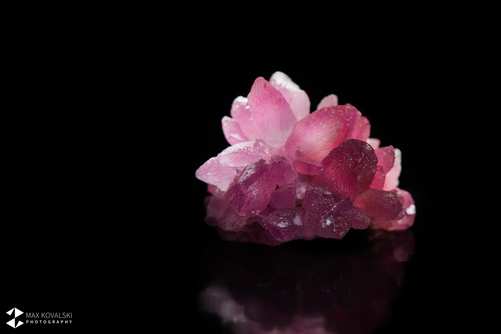 מושבה יפהפיה של קובלטו-קלציט בצורת פרח. צילום: מקס קובלסקי Photo by Max Kovalski www.maxkov.com