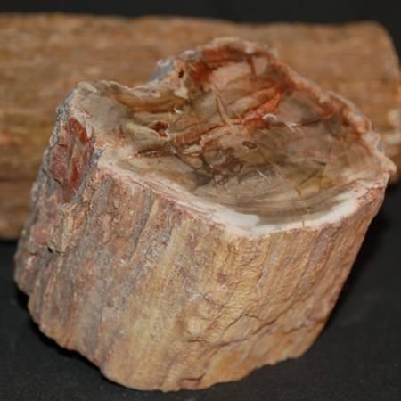 גביש גולמי של פטריפייד ווד. מהאוסף של אומנות ורוח www.art-with-spirit.com צילום: גל אבירז