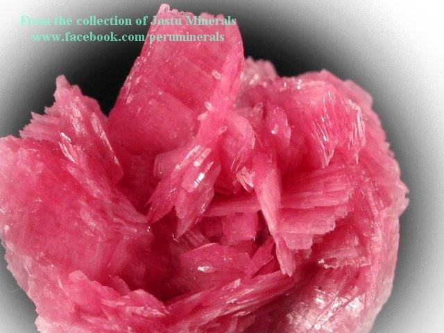 מושבה יפהפיה של רודונייט.מהאוסף של ג'סטו מינרלס מפרו. From the collection of Jastu Minerals from Peru