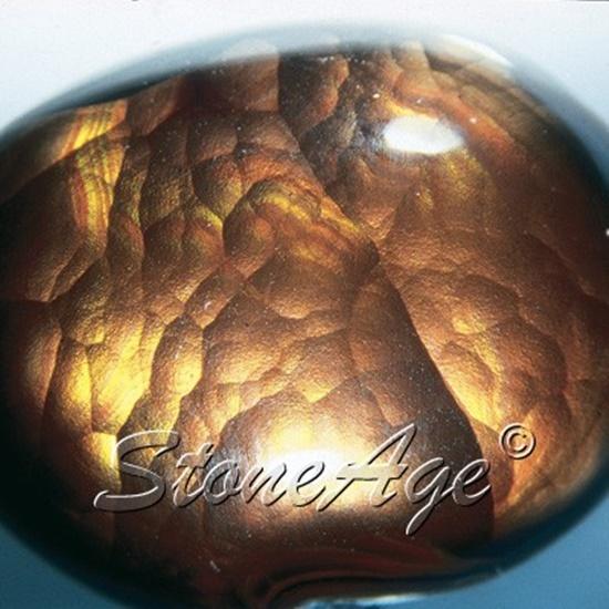 אגת-אש בצילום מקרוב. מהאתר של החנות סטונאייג'  www.stoneage.co.il צילום: שני תודר photo: Shani Toder
