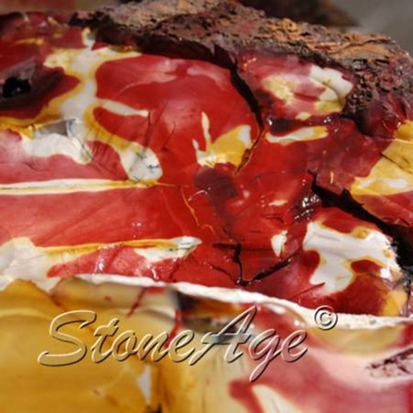 ג'ספר מוקקייט בצילום תקריב. מהאתר של החנות סטונאייג'  www.stoneage.co.il צילום: שני תודר photo: Shani Toder