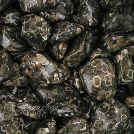 חלוקי אגת טוריטלה. מהאתר של החנות סטונאייג'  www.stoneage.co.il צילום: שני תודר photo: Shani Toder