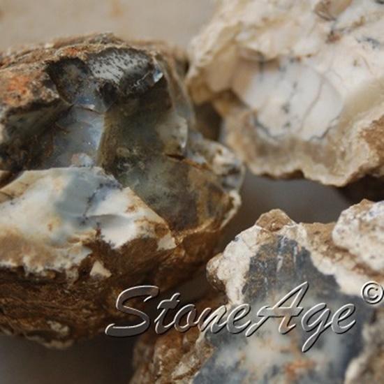 חלוקי אגת דנדרייט גולמיים. מהאתר של החנות סטונאייג'  www.stoneage.co.il צילום: שני תודר photo: Shani Toder