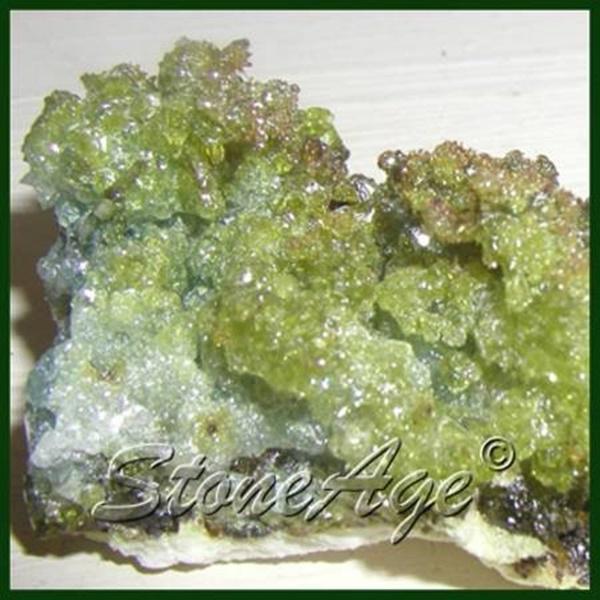 מושבה של זינסייט בירוק בהיר. מהאתר של החנות סטונאייג'  www.stoneage.co.il צילום: שני תודר photo: Shani Toder
